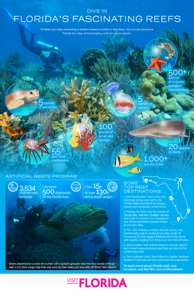 10 Great Spots For Snorkeling And Scuba Diving In Florida | Visit - Florida Wreck Diving Map