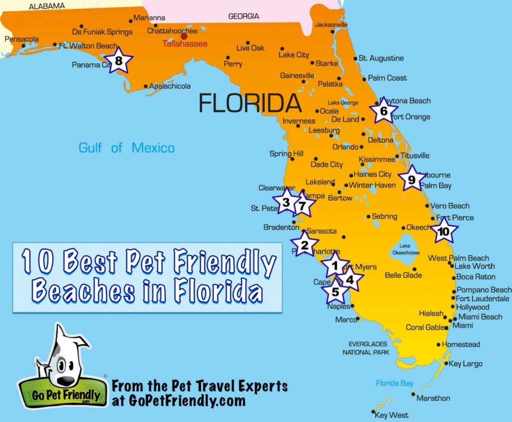 10 Of The Best Pet Friendly Beaches In Florida | Gopetfriendly - Map Of Florida Coast Beaches