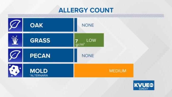 Allergy Map Texas