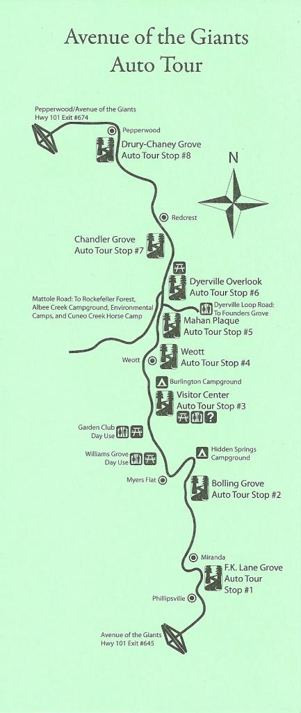 Avenue Of The Giants Auto Tour Map - Avenue Of The Giants - Avenue Of The Giants California Map