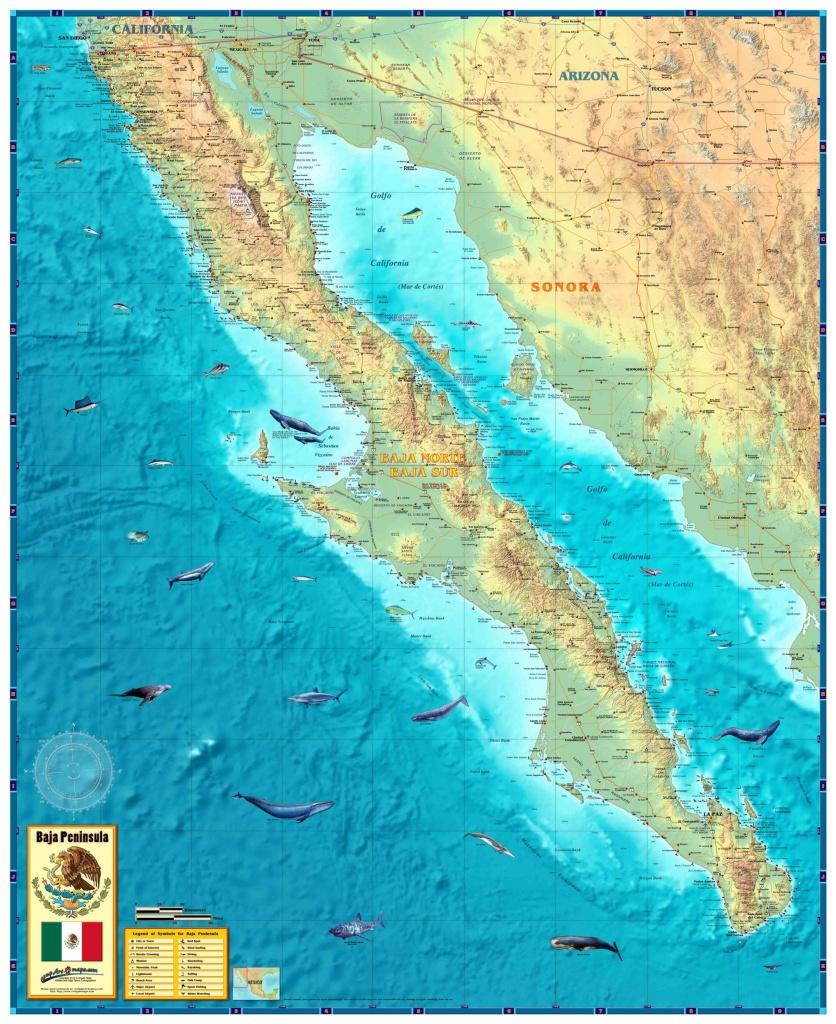 Baja Wall Map - Baja California Topographic Maps