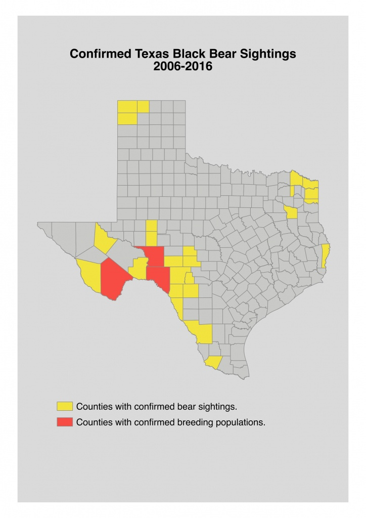 Bear Safety For Hunters In Texas - Texas Hunting Map