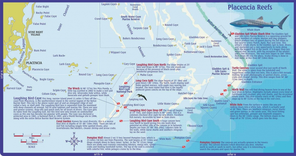 Belize Scuba Diving & Snorkeling On Ambergris Caye, Caribbean - Florida Dive Sites Map