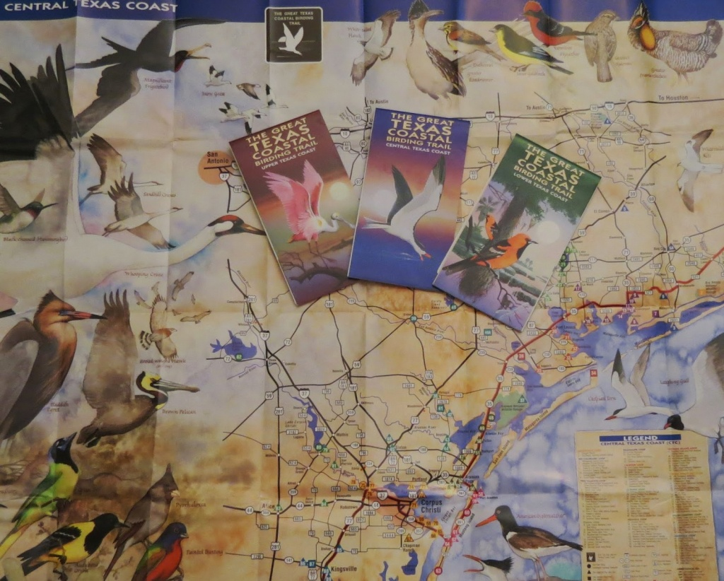 Birding Across Texas: Roadside Birding Along The Great Texas Coastal - Texas Birding Trail Maps