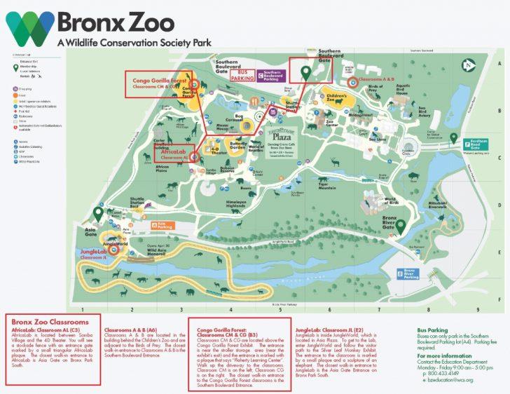 Bronx Zoo Map Printable