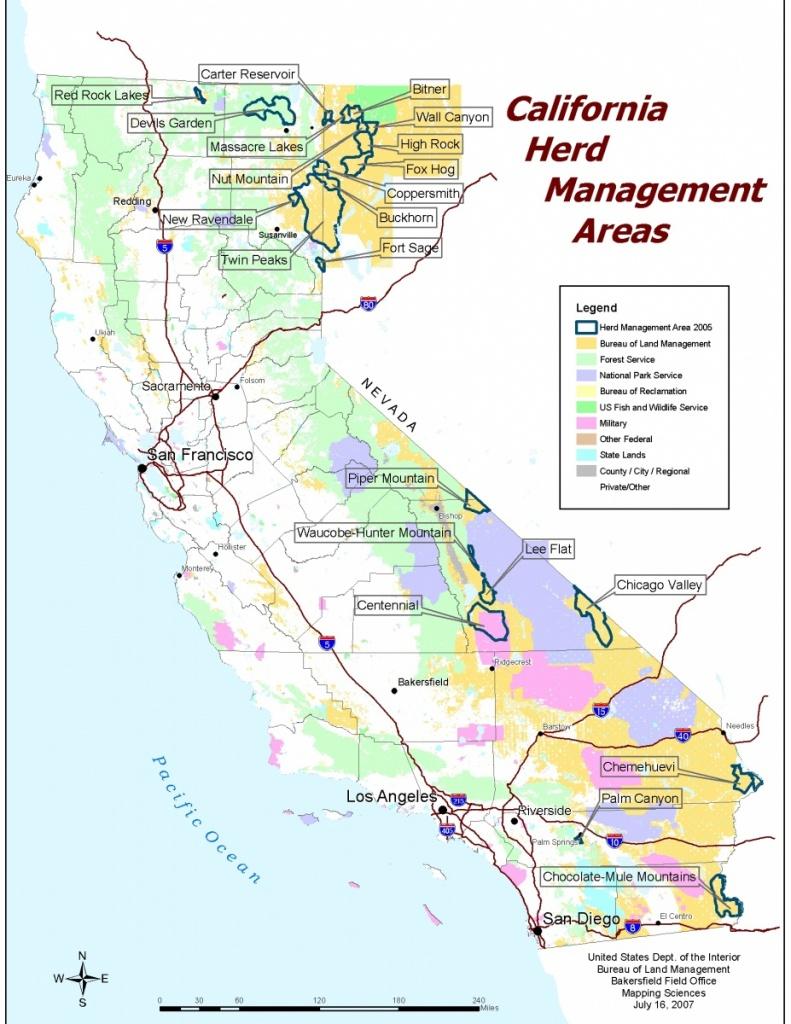 California - Herd Management Areas | Bureau Of Land Management - Wild Hogs California Map