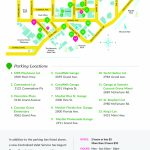 Coconut Grove Miami | » Maps   Coconut Grove Florida Map
