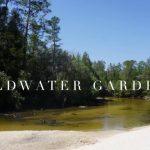 Coldwater Gardens | Florida Hikes!   Coldwater Creek Florida Map