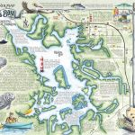 Crystal River's Spring Maps | The Souvenir Map & Guide Of Kings Bay   Springs Map Florida