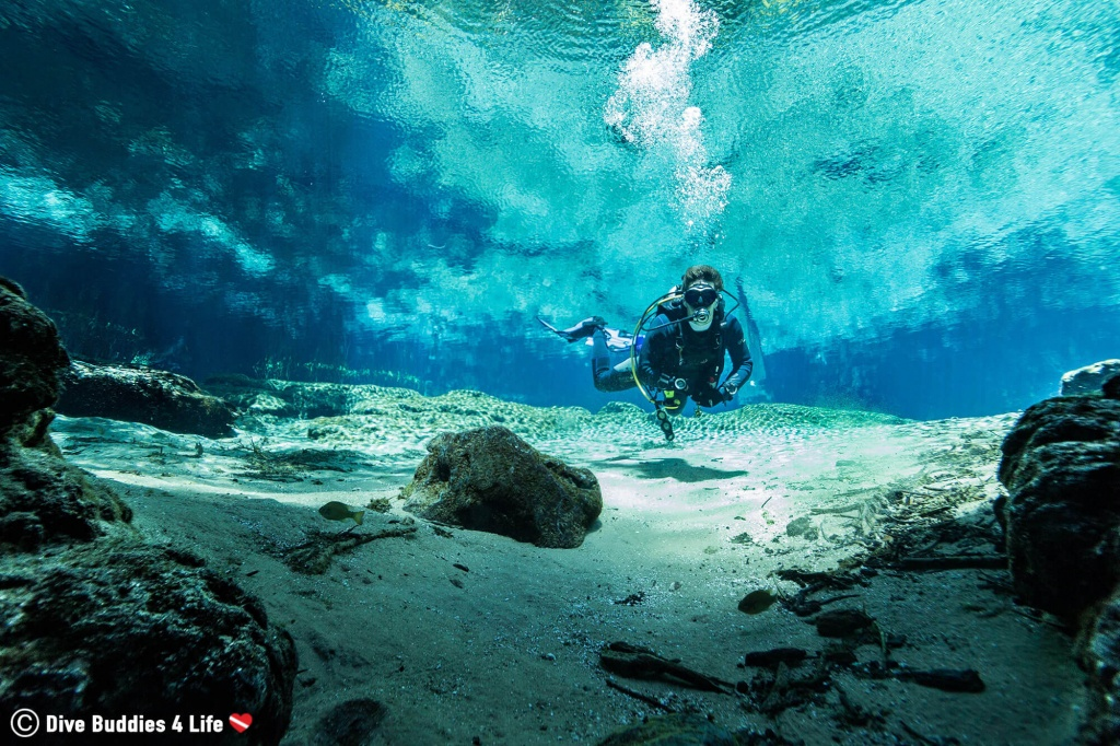 Diving Into Ginnie And Devils Spring | Dive Buddies For Life - Florida Springs Diving Map