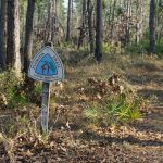 Download The Florida Trail App | Florida Hikes!   Florida Trail Maps Download