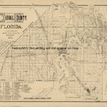 Duval Florida Maps | 1884 Large Land Ownership Map Duval County   Old Maps Of Jacksonville Florida