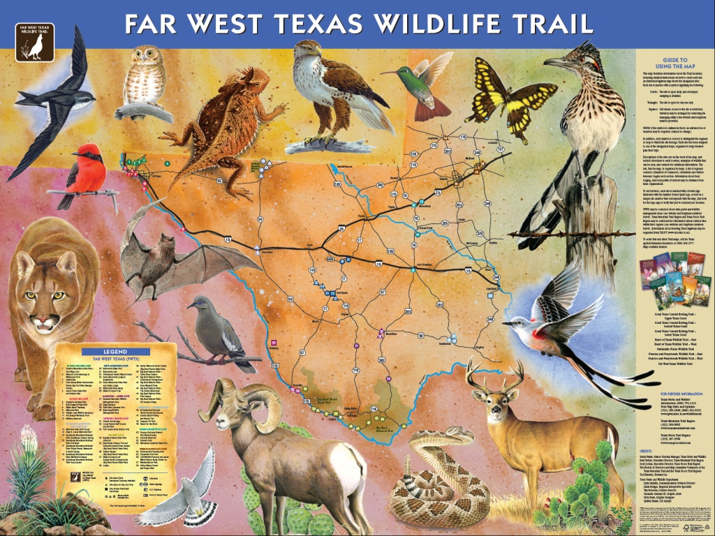 Far West Texas Wildlife Trail Debut Marks Milestone - Ride Texas - Texas Birding Trail Maps