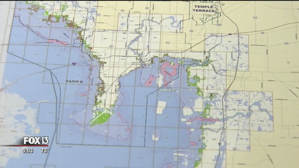 Fema Proposes New Flood Maps For Hillsborough, Pinellas Counties - Flood Zone Map Hillsborough County Florida