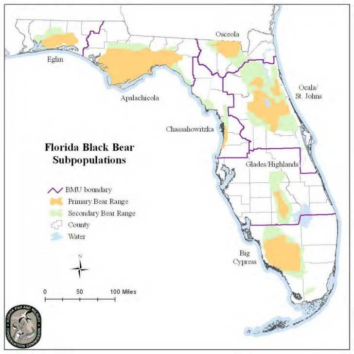 Bears In Florida Map