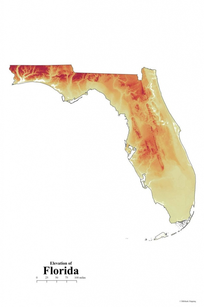 Florida Elevation Map   Etsy - Florida Elevation Map By Address