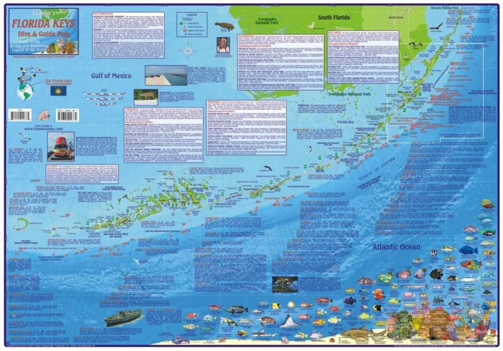 Florida Map, Florida Keys Guide And Dive,laminated, 2010Frankos - Florida Keys Dive Map