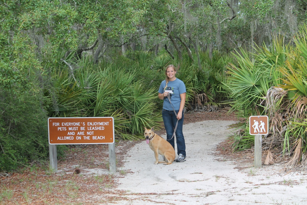Florida State Parks Pet Policy   Florida State Parks - Florida State Parks Rv Camping Map