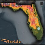 Florida Topography Map | Colorful Natural Physical Landscape   Florida Elevation Map By Address