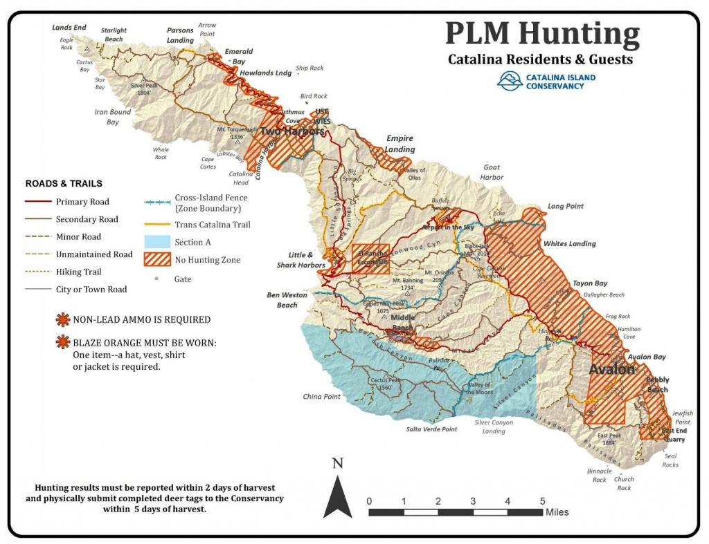 Game Management - Wild Hogs California Map