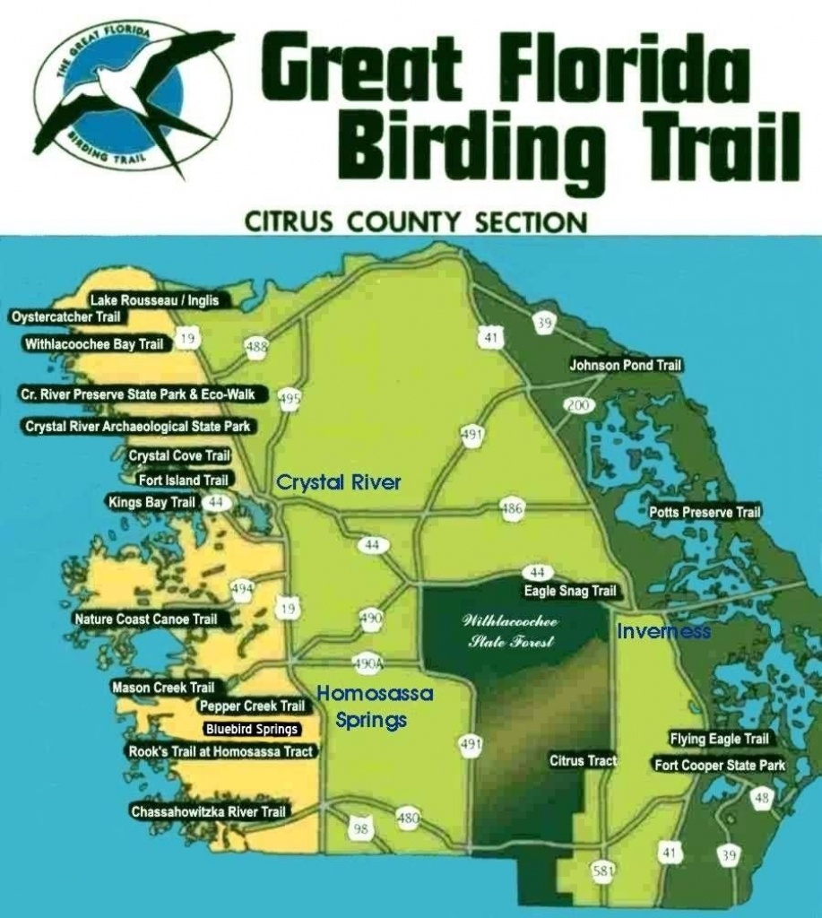Great Florida Birding Trail - Citrus County Section | Birding In - Great Florida Birding Trail Map