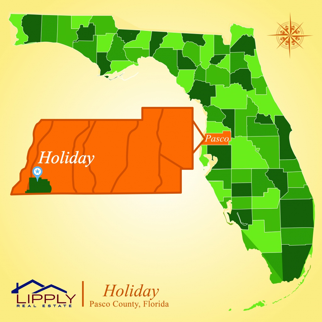 Holiday Fl Subdivisions Homes And Condos Pasco County - Where Is Holiday Florida On The Map