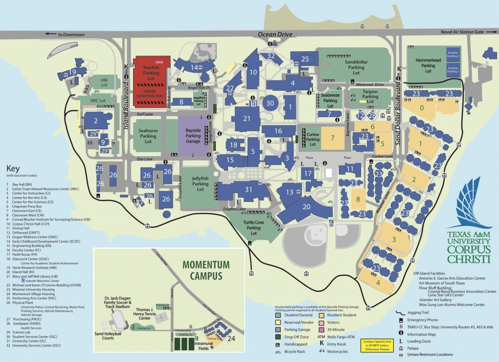 Homeless Student Resources Texas A&m University-Corpus Christi - Texas A&m Housing Map