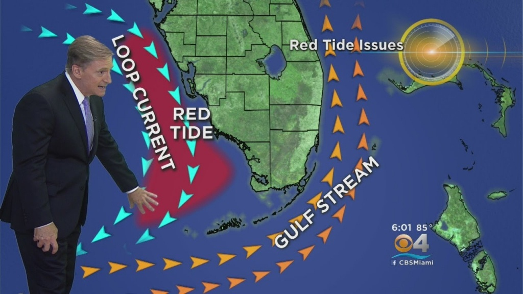 How Red Tide Issues On Florida's West Coast Have Found Their Way East - Current Red Tide Map Florida