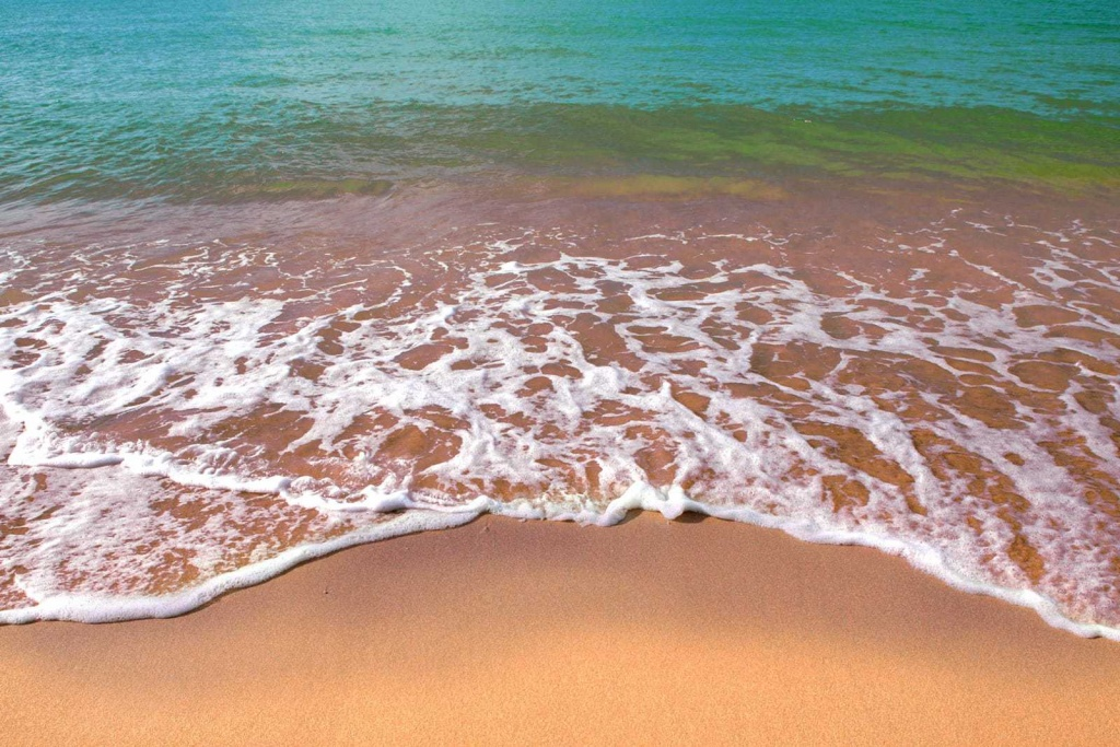 Latest Update: 2018 Florida Gulf Coast Red Tide Outbreak | Ingman Marine - Florida Beach Bacteria Map 2018