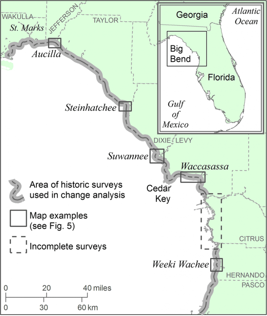 Location Map Of Florida Big Bend Marsh Coast On The Gulf Of Mexico - Gulf Of Mexico Map Florida