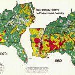 Map Analysis Blog Project: Deer Density   Mule Deer Population Map Texas