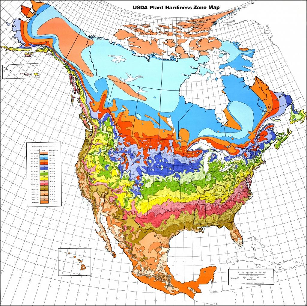 Map Downloads   Usda Plant Hardiness Zone Map - Usda Zone Map Florida