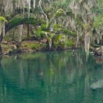 Map Of Florida Springs | Florida Hikes!   Natural Springs Florida Map