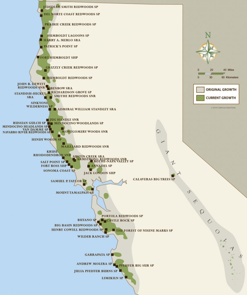 Map Of Northern California Redwood Forest – Map Of Usa District - California Redwoods Map