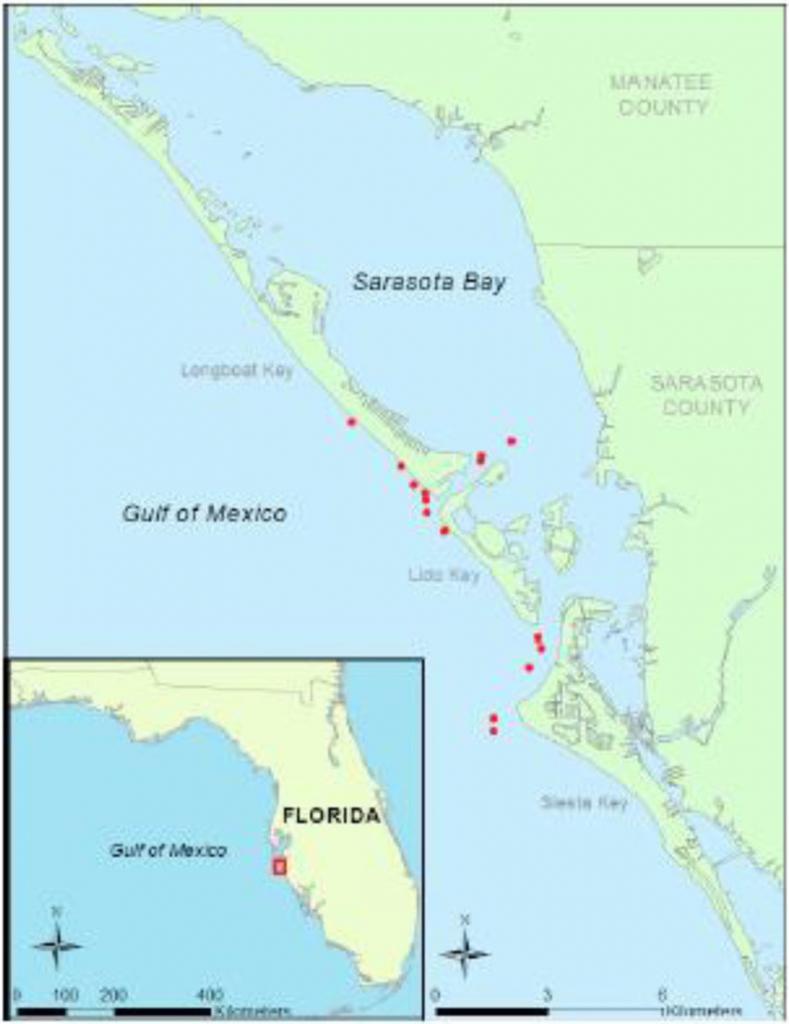 Map Of Sampling Area Off Sarasota, Fl Showing Locations Of A - Sarasota Florida Map