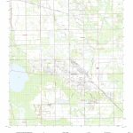 Mytopo Immokalee, Florida Usgs Quad Topo Map   Immokalee Florida Map