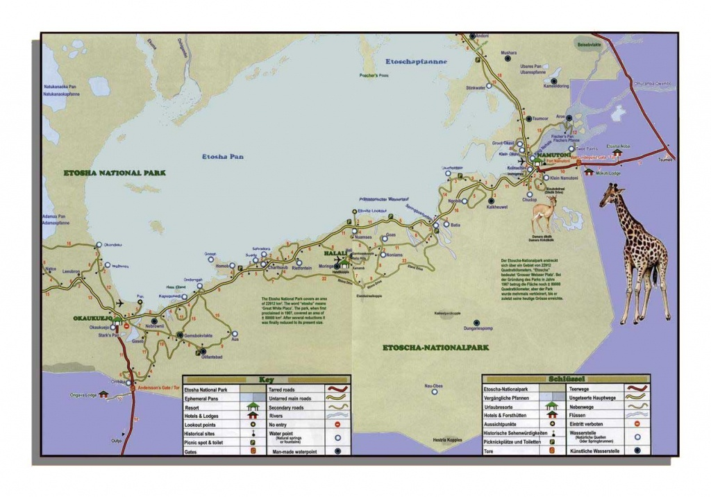 Namibia Road Map - Towns Plans & All Maps Of Namibia - Printable Road Map Of Namibia