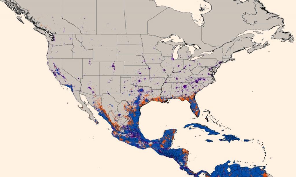 New Map Predicts Spread Of Zika Virus   Medicine   Sci-News - Texas Zika Map