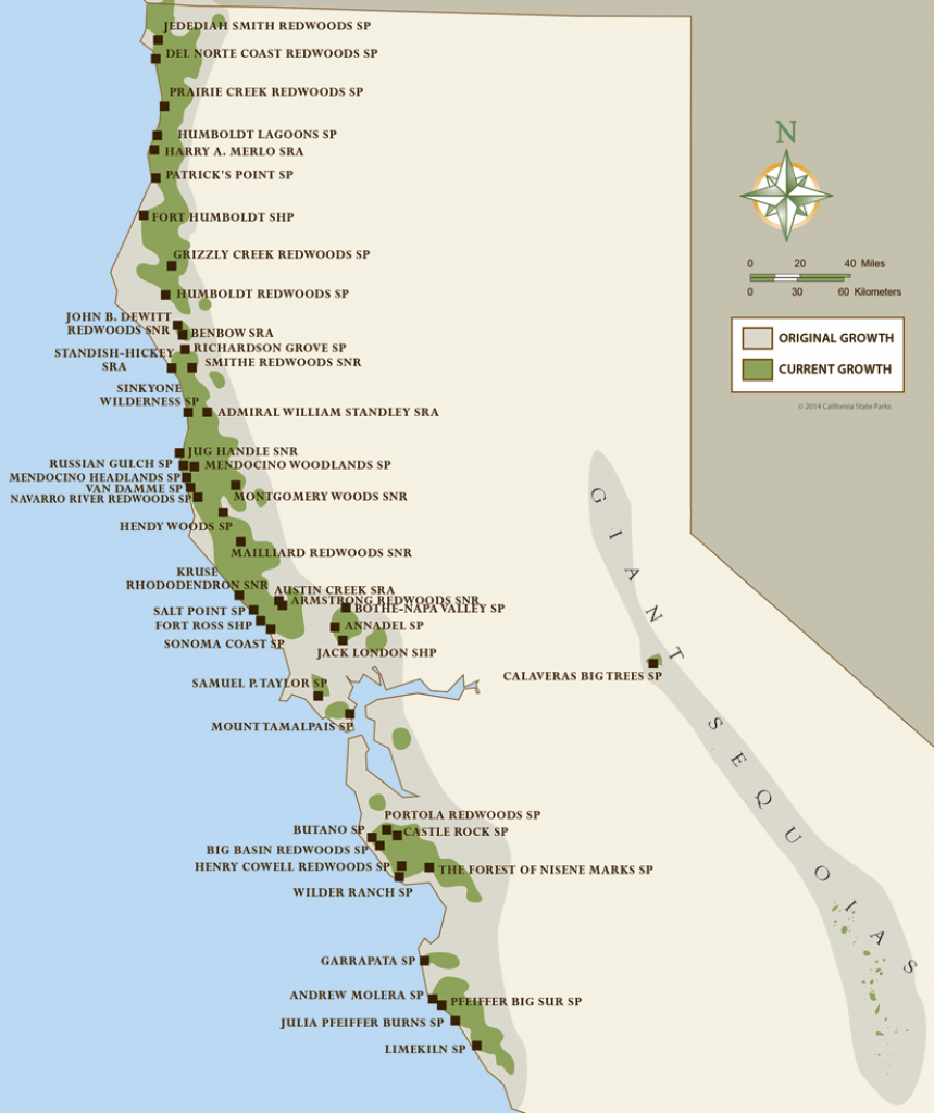 North Coast Redwoods Map | California Girl In 2019 | Humboldt - Camping Northern California Coast Map