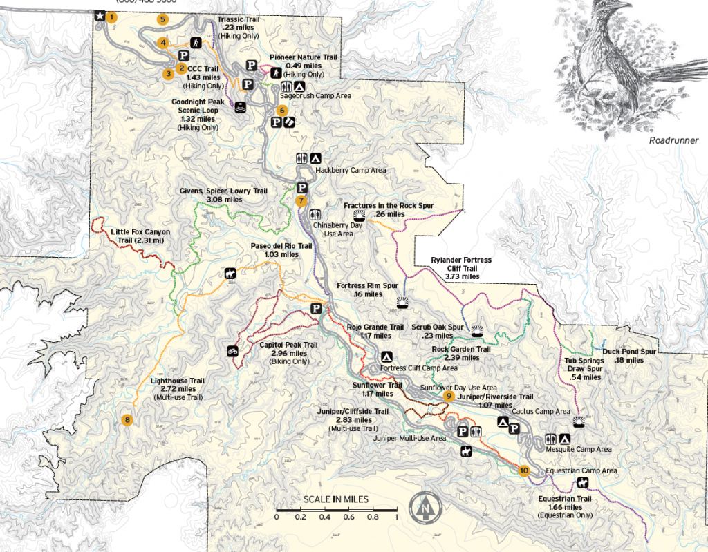 Palo Duro Canyon State Park - Trailmeister - Palo Duro Canyon Map Of Texas