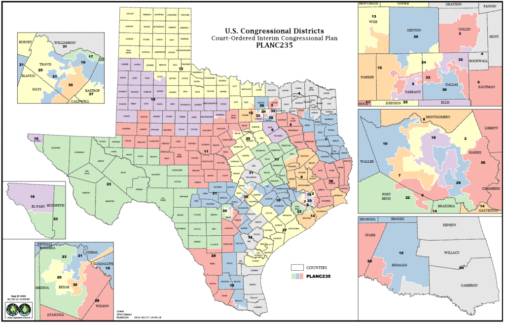 Political Participation: How Do We Choose Our Representatives - Texas Congressional District Map