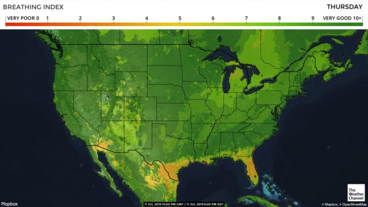 Pollen Map Texas