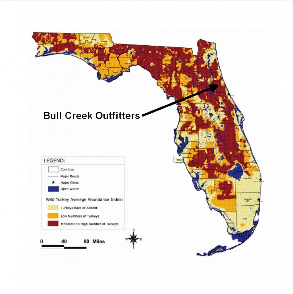 Population Map | Bull Creek Outfitters - Florida Wild Hog Population Map