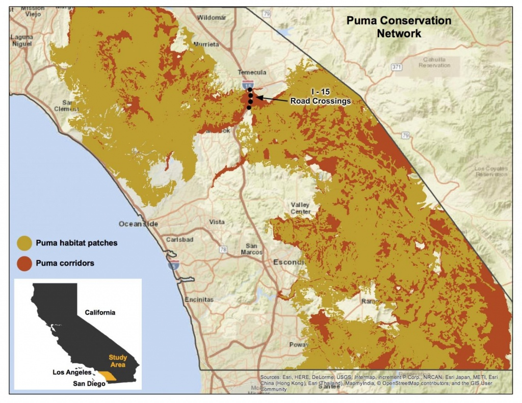 Puma Conservation Area Map [Image] | Eurekalert! Science News - Mountain Lions In California Map
