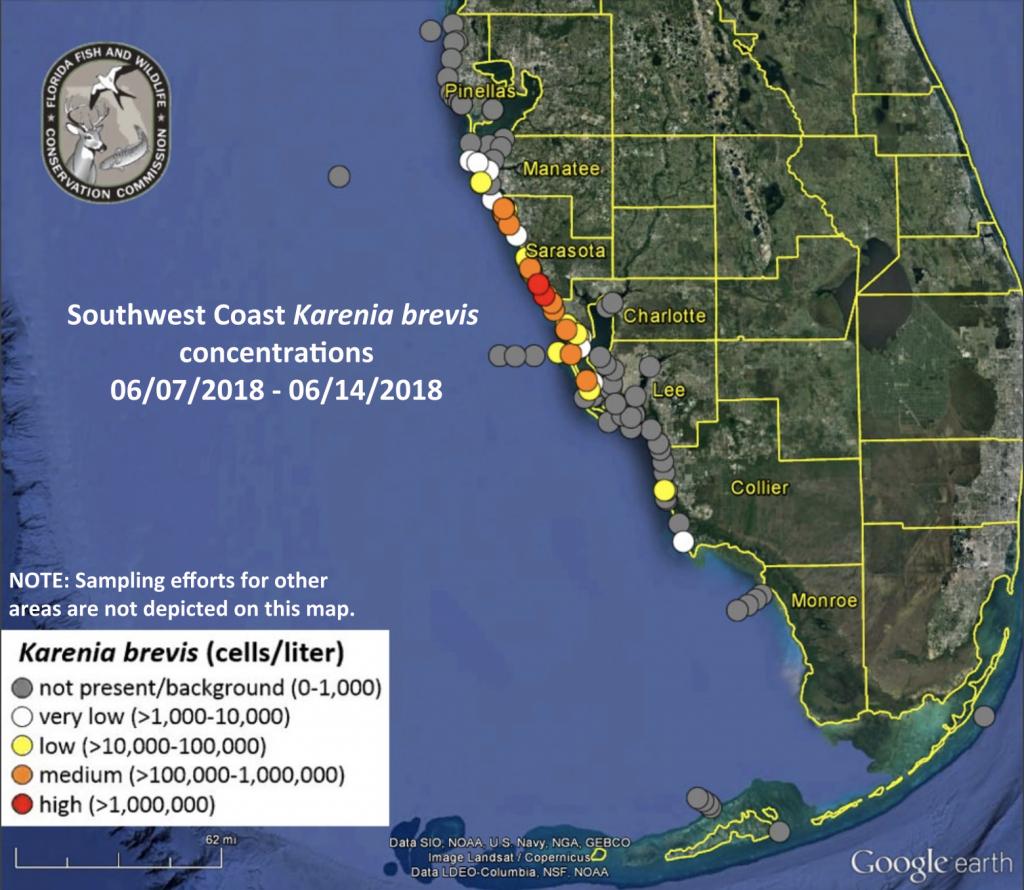 Red Tide Alert On Marco Island Beaches | Coastal Breeze News - Florida Beach Bacteria Map 2018