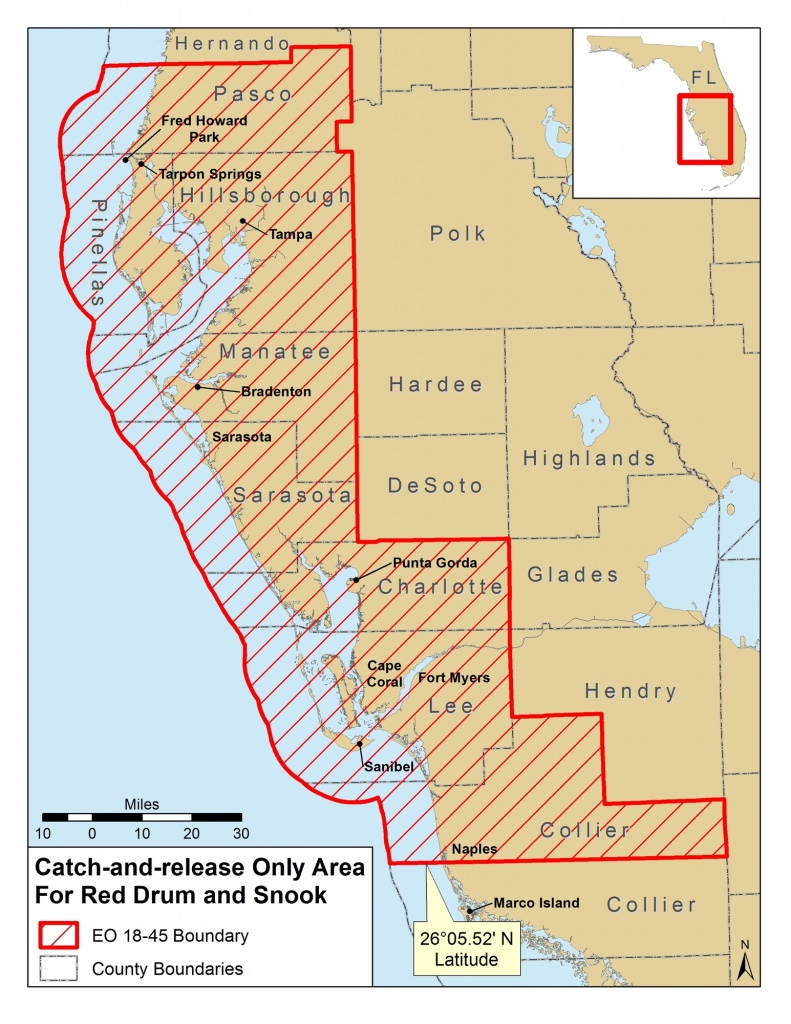 Red Tide Beach Cleanup - Current Red Tide Map Florida