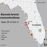 Red Tide: Why Florida's Toxic Algae Bloom Is Killing Fish, Manatees   Florida Blue Green Algae Map