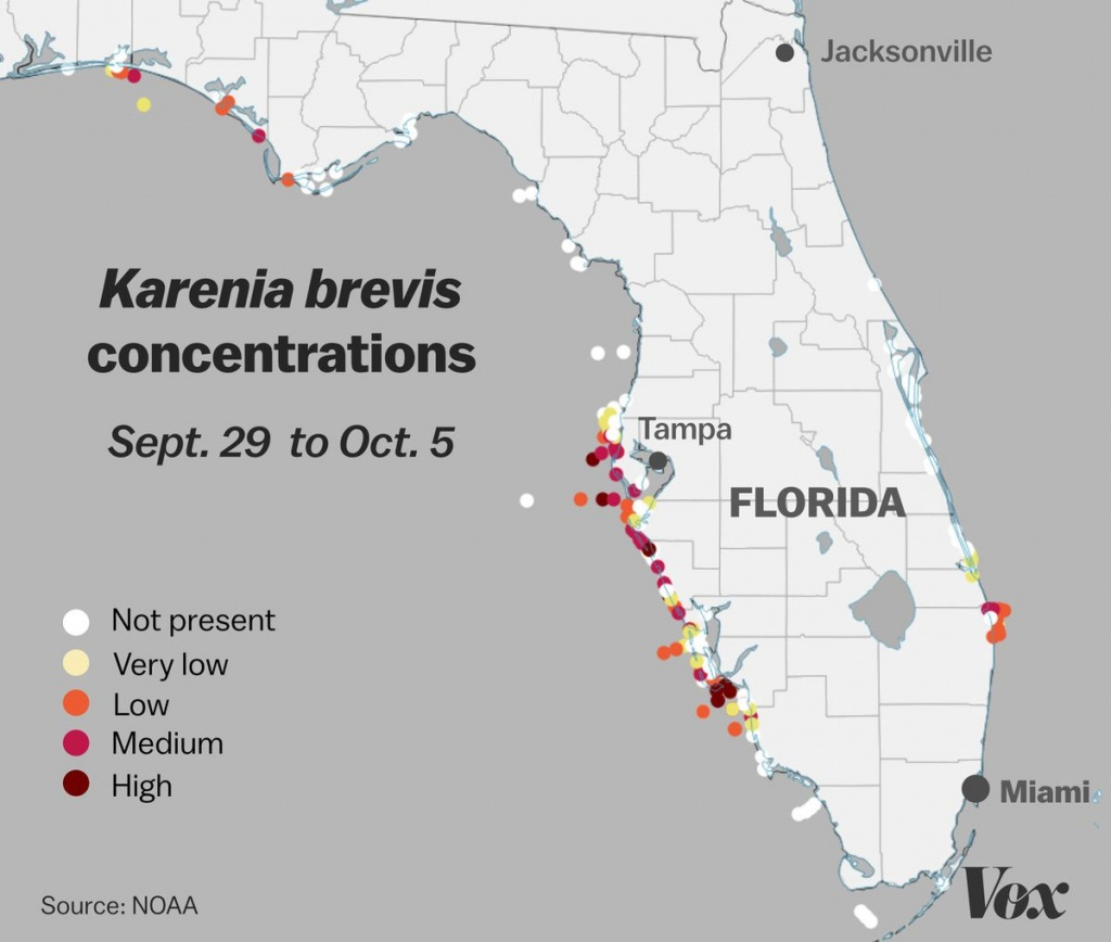 Red Tide: Why Florida's Toxic Algae Bloom Is Killing Fish, Manatees - Florida Snake Problem Map