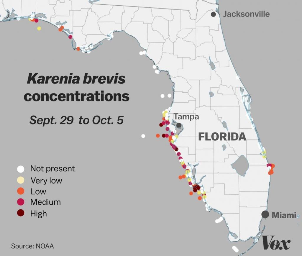 Red Tide: Why Florida's Toxic Algae Bloom Is Killing Fish, Manatees - Toxic Algae In Florida Map