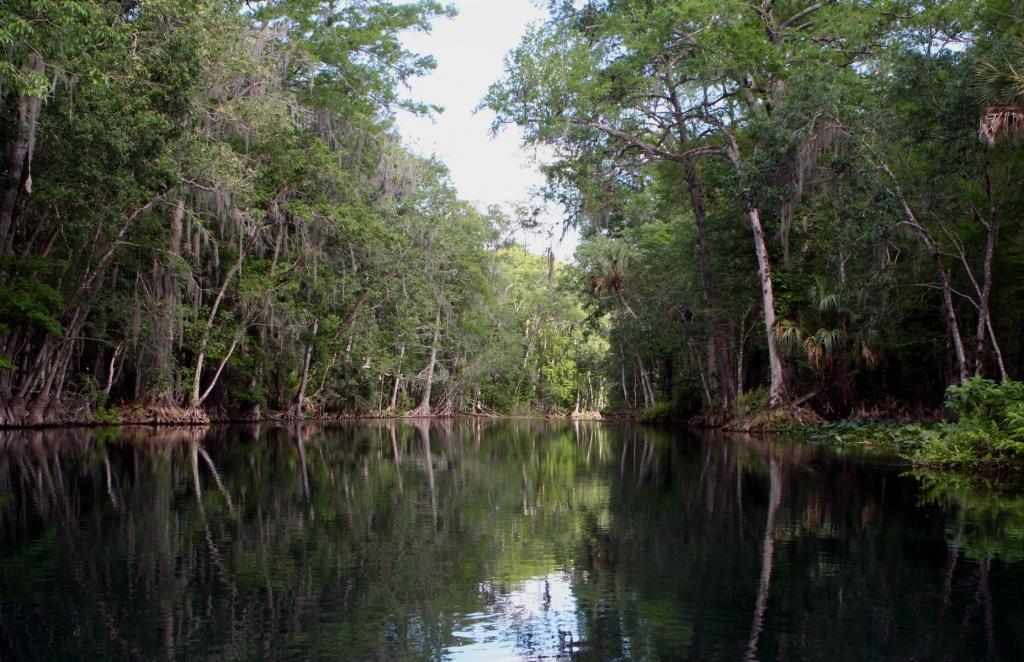 Silver River (Florida) - Wikipedia - Silver River Florida Map